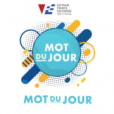 VFE ứng dụng học tiếng Pháp 4