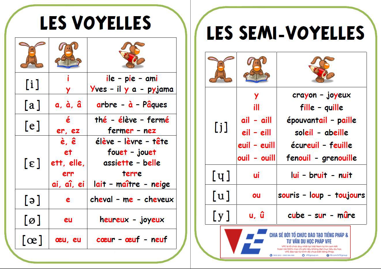 VFE học tiếng Pháp bắt đầu từ đâu 1